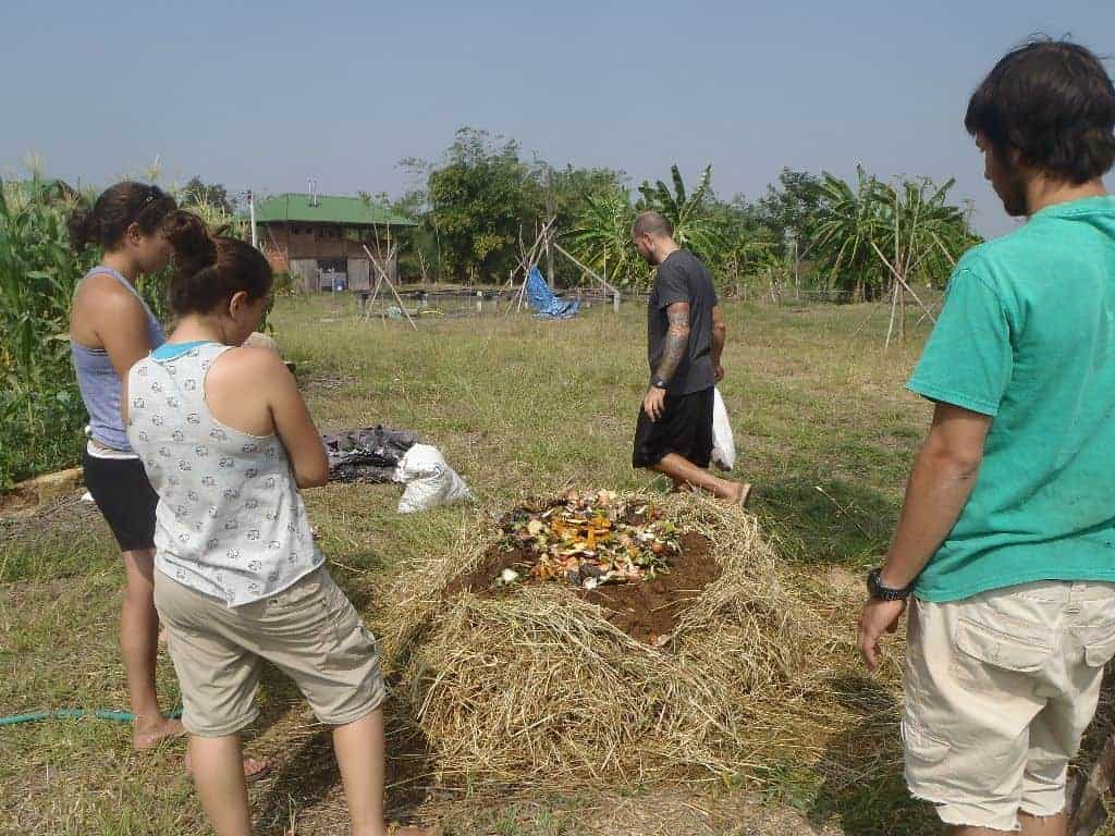 Permaculture Design Course Thailand Compost 18 Day Berkeley 051