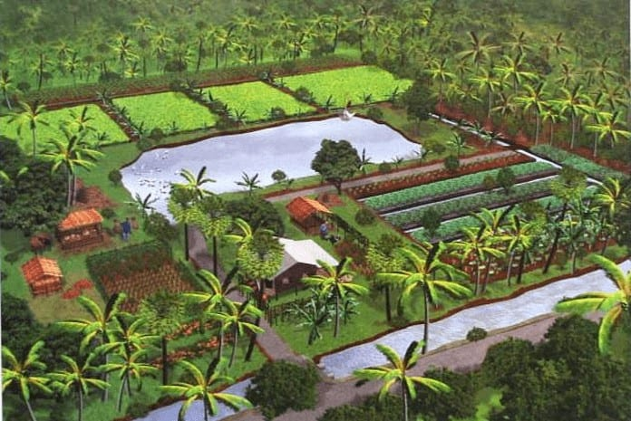 New Theory Farming System in Thailand and Permaculture Model Farm