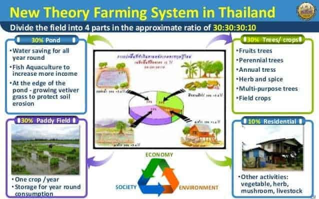 New Theory Farming System in Thailand and Permaculture