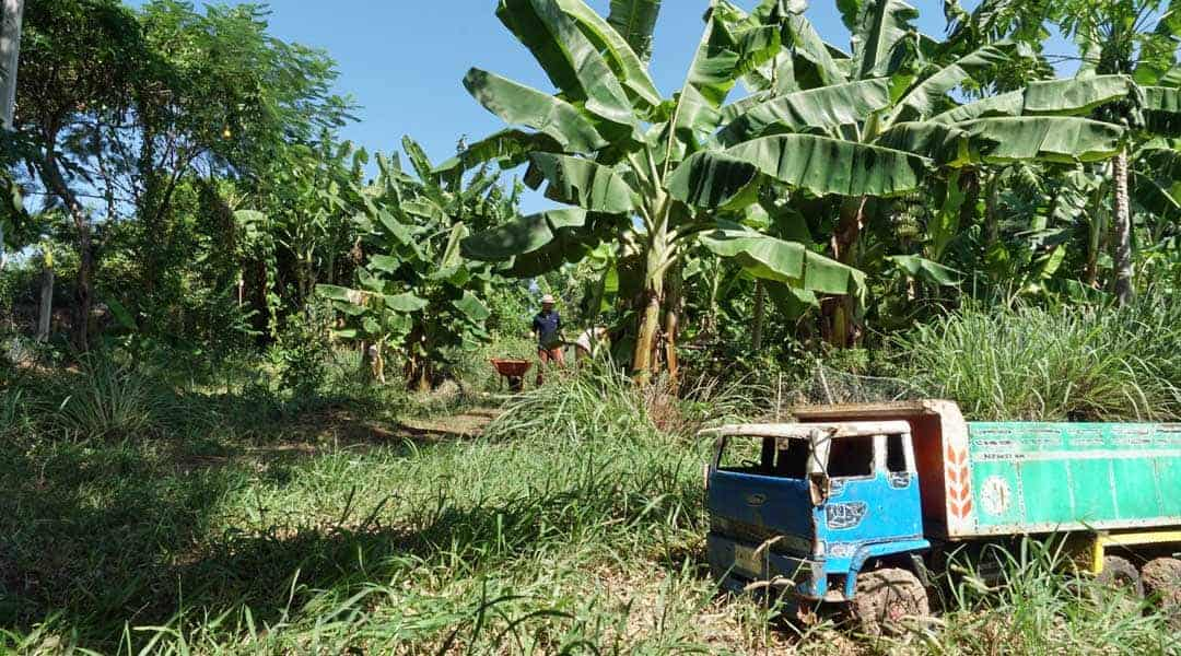 Working in the Food Forest at Rak Tamachat