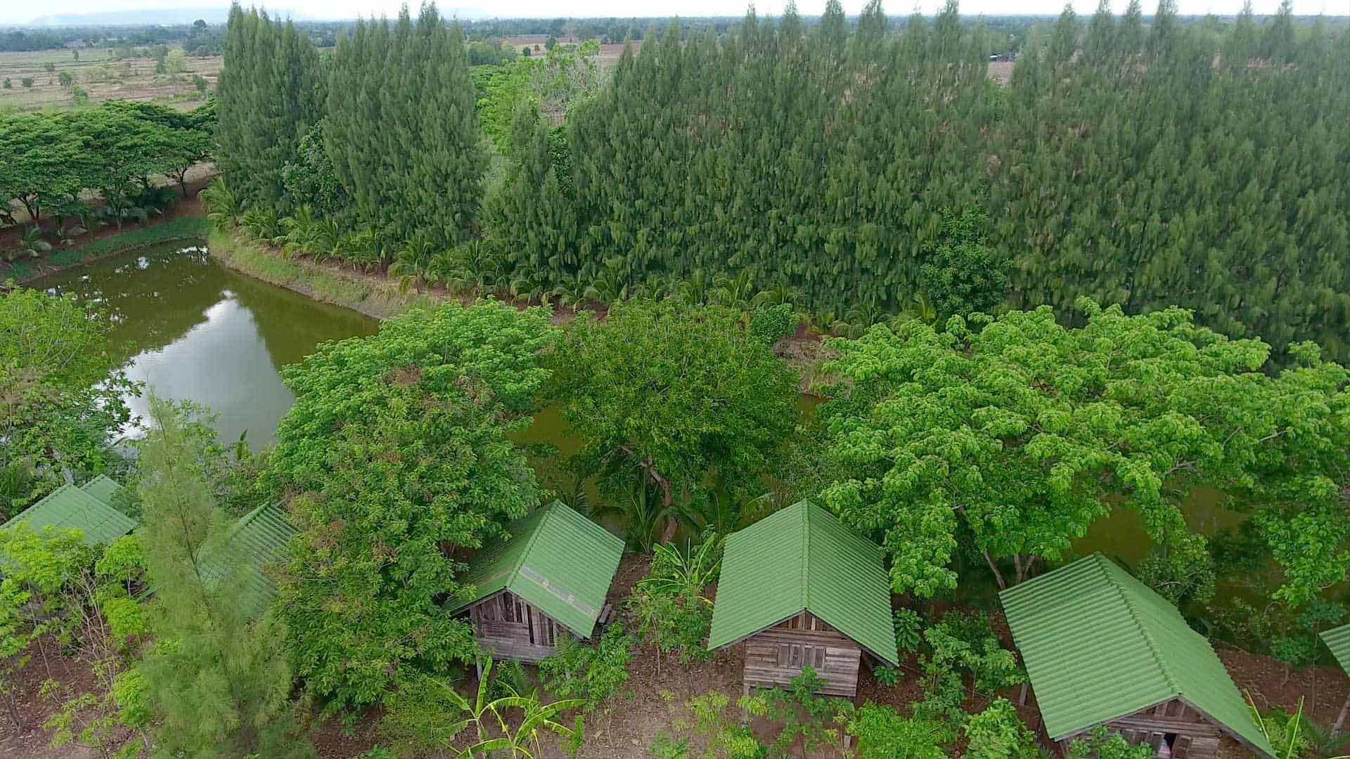 Aerial view of the bungalow area surrounded by Natureage of