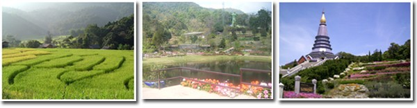 Thailand Permaculture The Royal Agricultural Station Inthanon