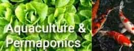 Aquaculture in Permaculture Online Course Module 13