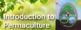 Introduction to Permaculture Online Permaculture Course