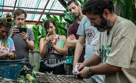 Permaculture Internship Teaching Permaculture