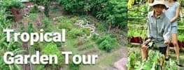 online Permaculture Design Course Tropical Garden Tour