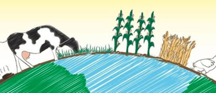 Online Permaculture Courses