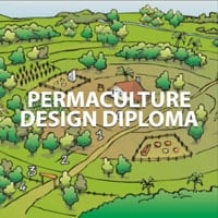 Diploma of Permaculture, PD.