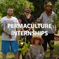 Permaculture Internships Asia