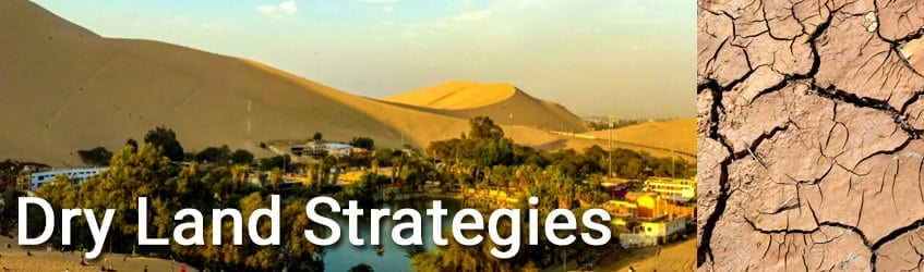 Image for Dry Land Strategies at Rak Tamachat