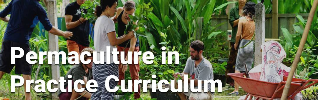 Image for Permaculture in Practice Curriculum