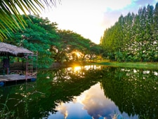 Image of a pond at sunset